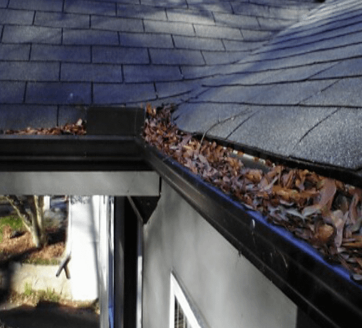 roof cleaning olympia